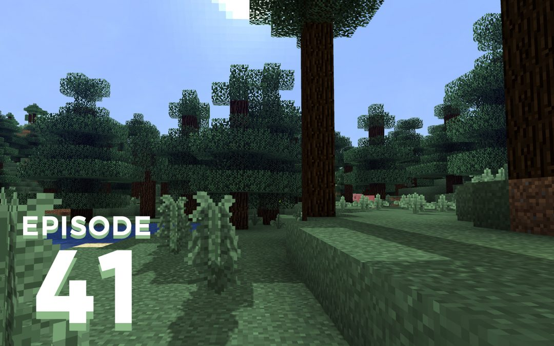 The Spawn Chunks 041: Show Me The Muddy Pig