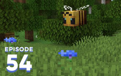 The Spawn Chunks 054: To Bee Or Not To Bee